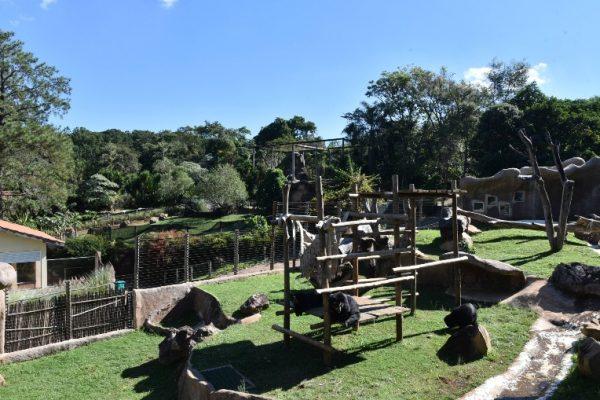 parque ecológico são carlos